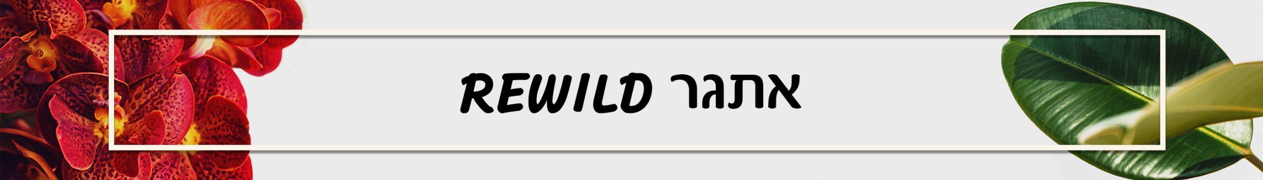 אתגר rewild